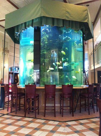 fish tank in tavern